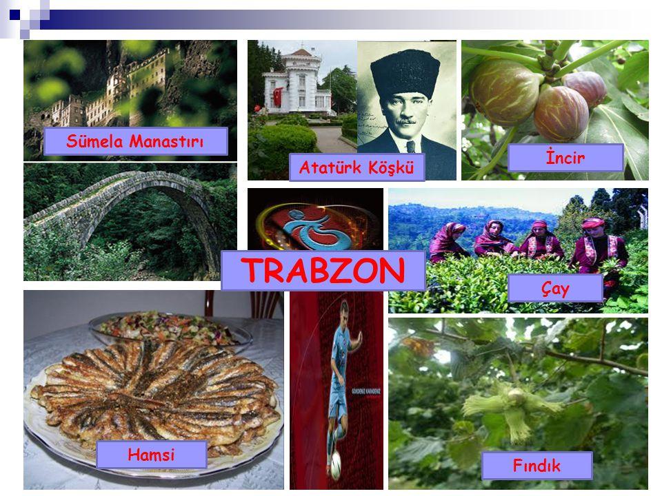 Sümela Manastırı Trabzon İncir Atatürk Köşkü TRABZON Çay Hamsi Fındık