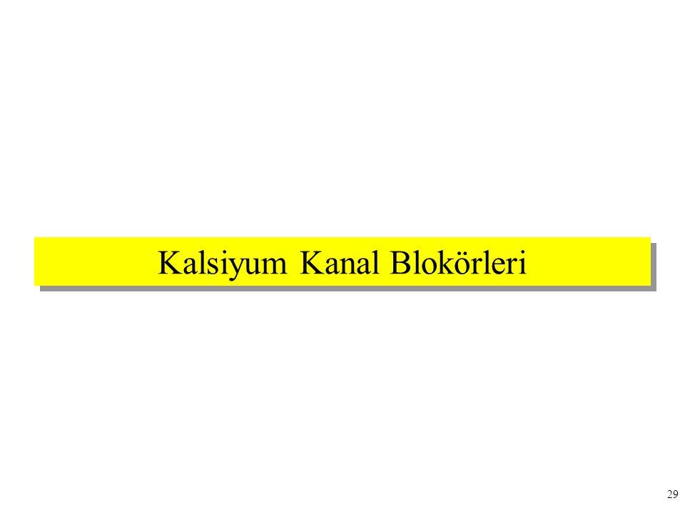 Kalsiyum Kanal Blokörleri