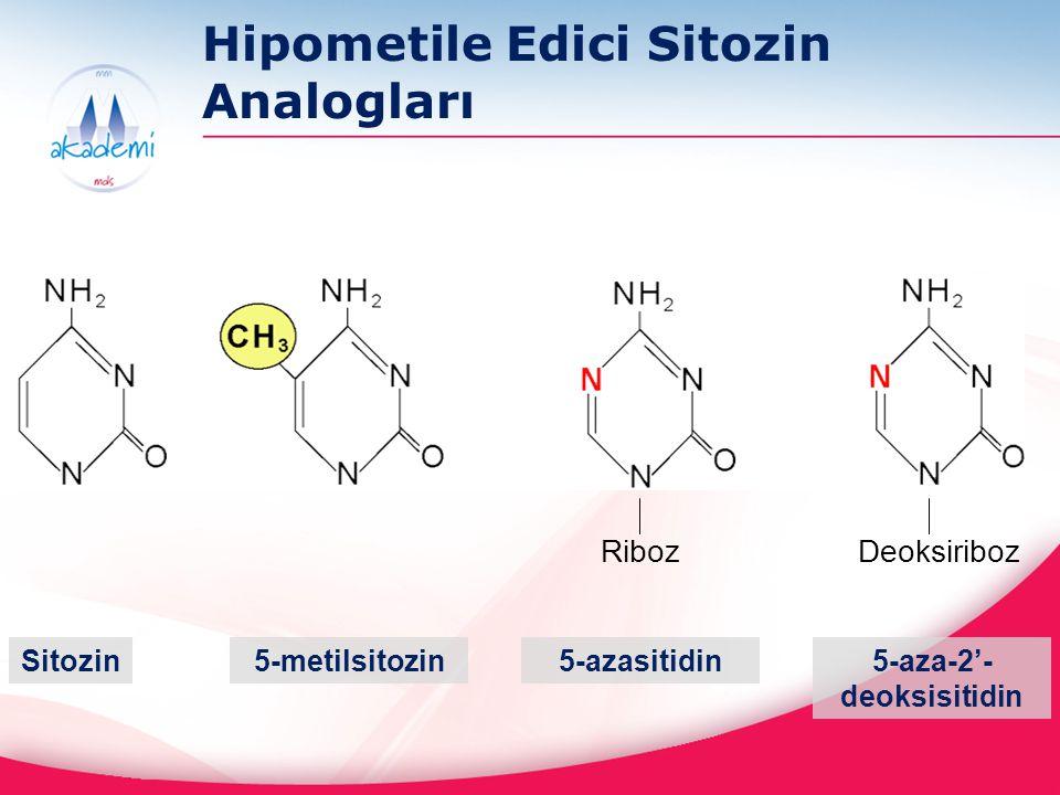 Hipometile Edici Sitozin Analogları