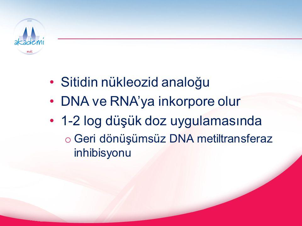 Sitidin nükleozid analoğu DNA ve RNA'ya inkorpore olur