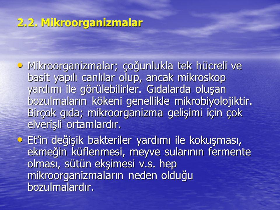 2.2. Mikroorganizmalar