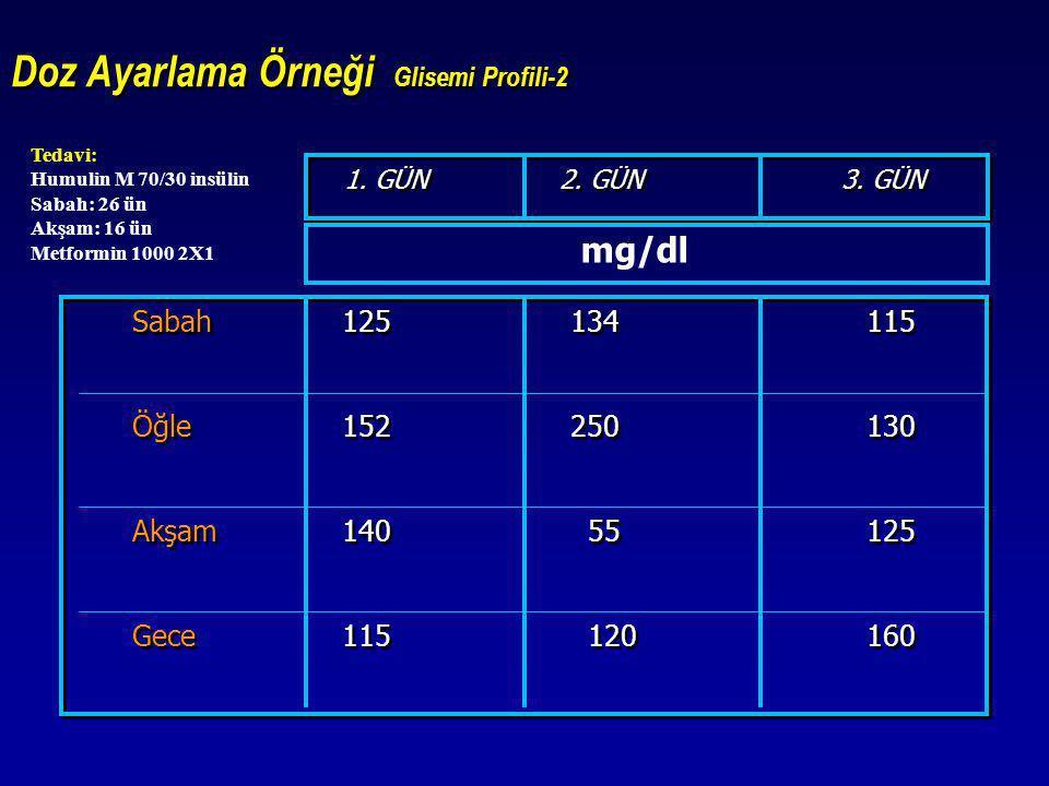 Doz Ayarlama Örneği Glisemi Profili-2