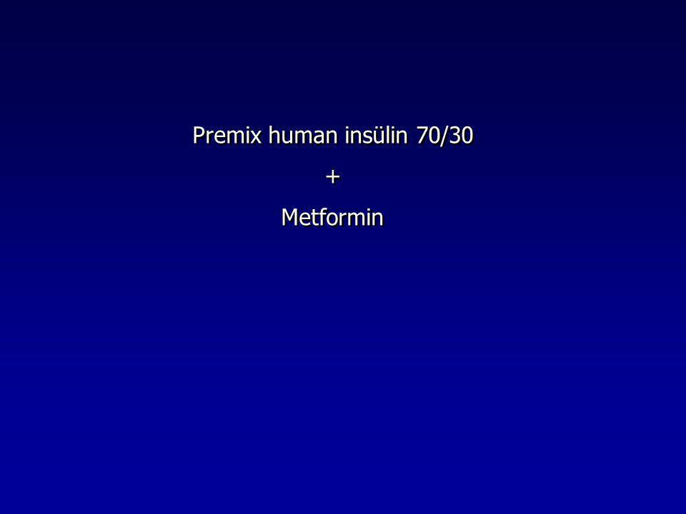 Premix human insülin 70/30 + Metformin