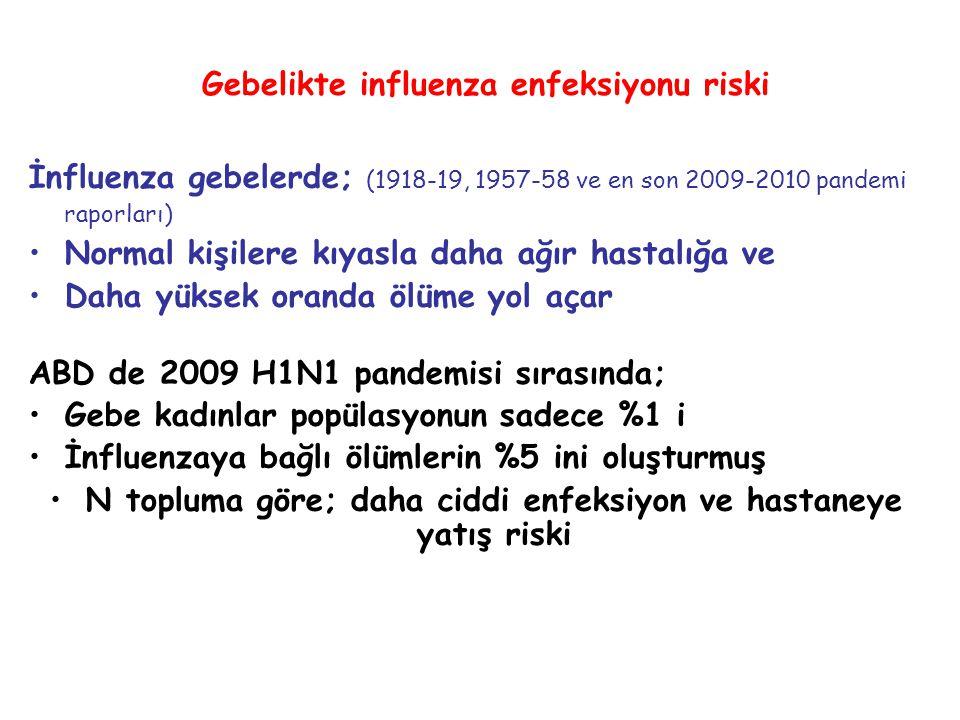 Gebelikte influenza enfeksiyonu riski