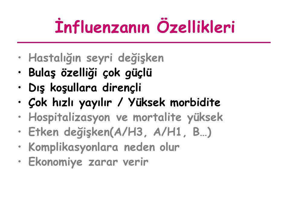 İnfluenzanın Özellikleri
