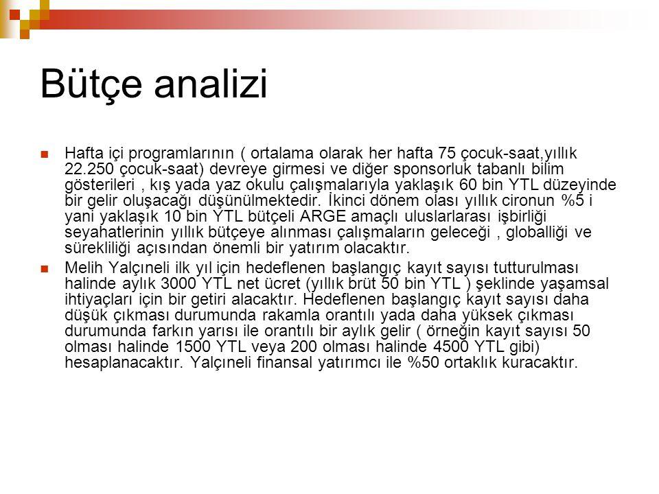 Bütçe analizi