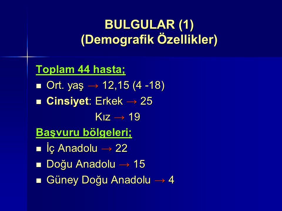 BULGULAR (1) (Demografik Özellikler)