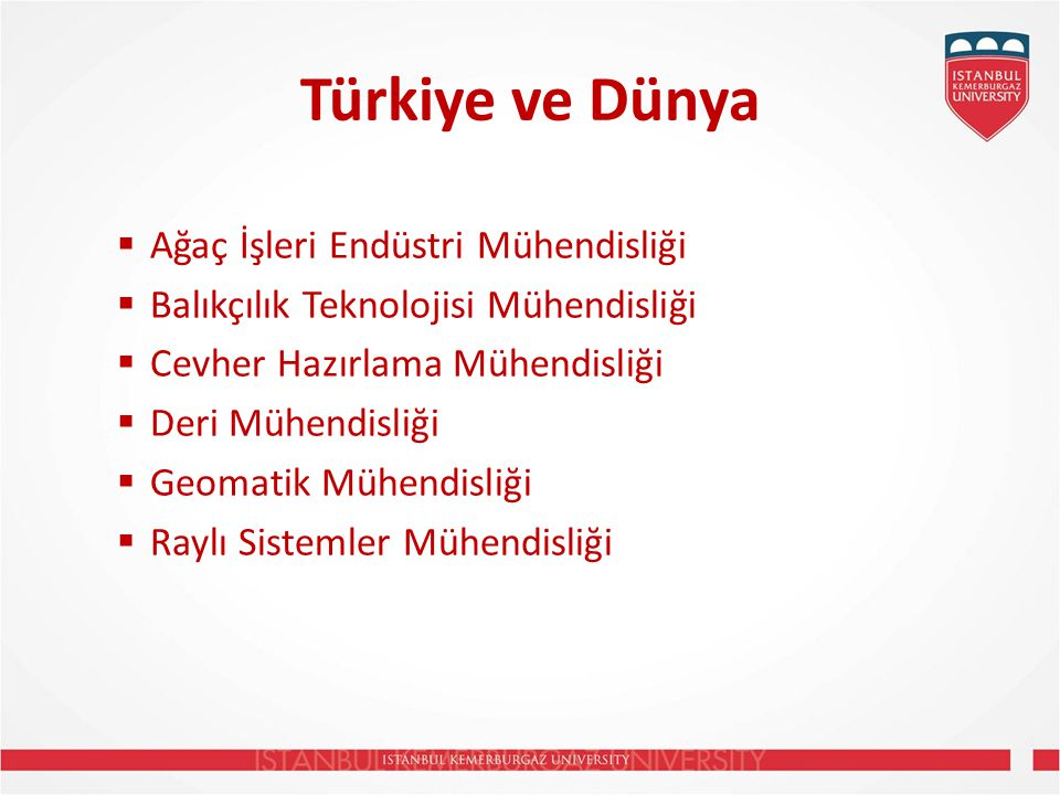 Türkiye ve Dünya Ağaç İşleri Endüstri Mühendisliği