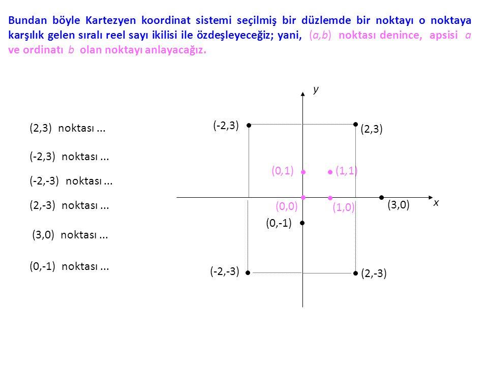 Bundan böyle Kartezyen koordinat sistemi seçilmiş bir düzlemde bir noktayı o noktaya karşılık gelen sıralı reel sayı ikilisi ile özdeşleyeceğiz; yani, (a,b) noktası denince, apsisi a ve ordinatı b olan noktayı anlayacağız.
