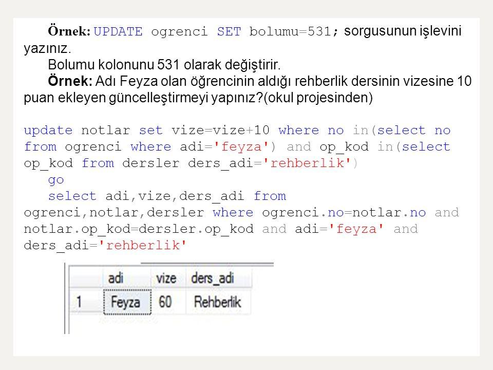 Örnek: UPDATE ogrenci SET bolumu=531; sorgusunun işlevini yazınız.