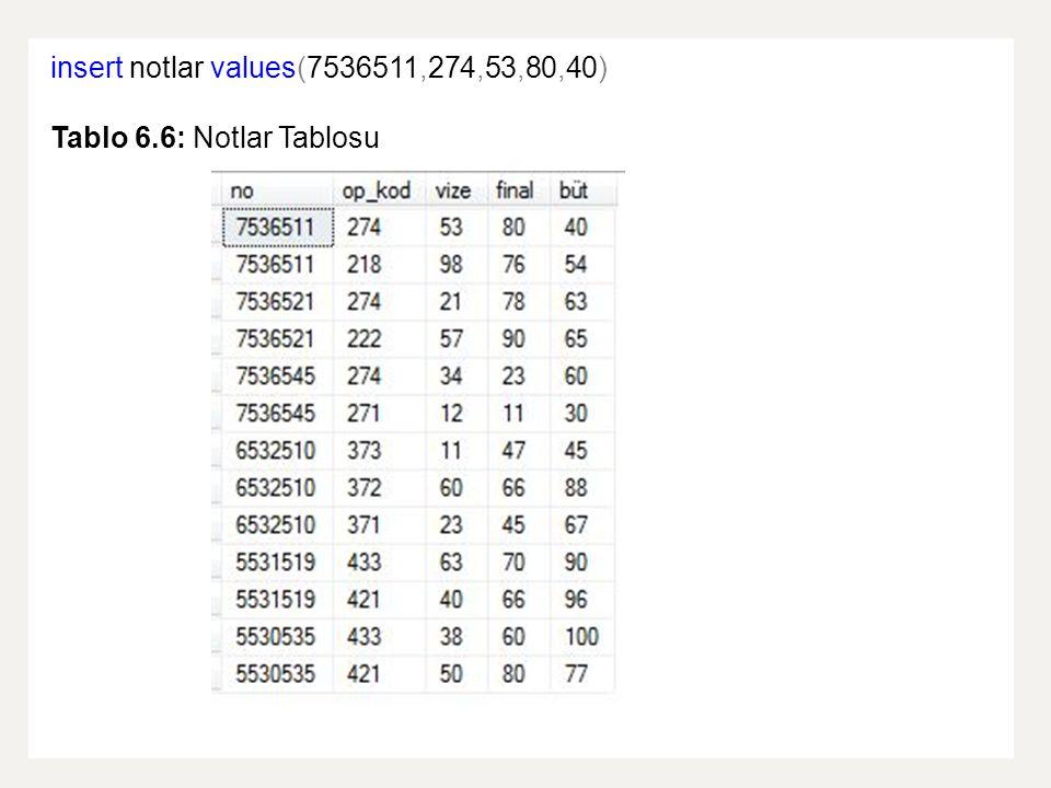 insert notlar values(7536511,274,53,80,40)