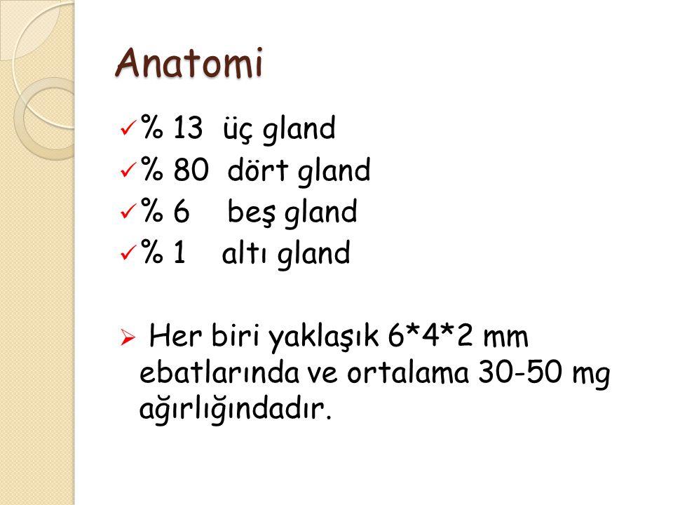 Anatomi % 13 üç gland % 80 dört gland % 6 beş gland % 1 altı gland