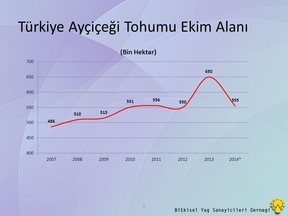 Türkiye Ayçiçeği Tohumu Ekim Alanı
