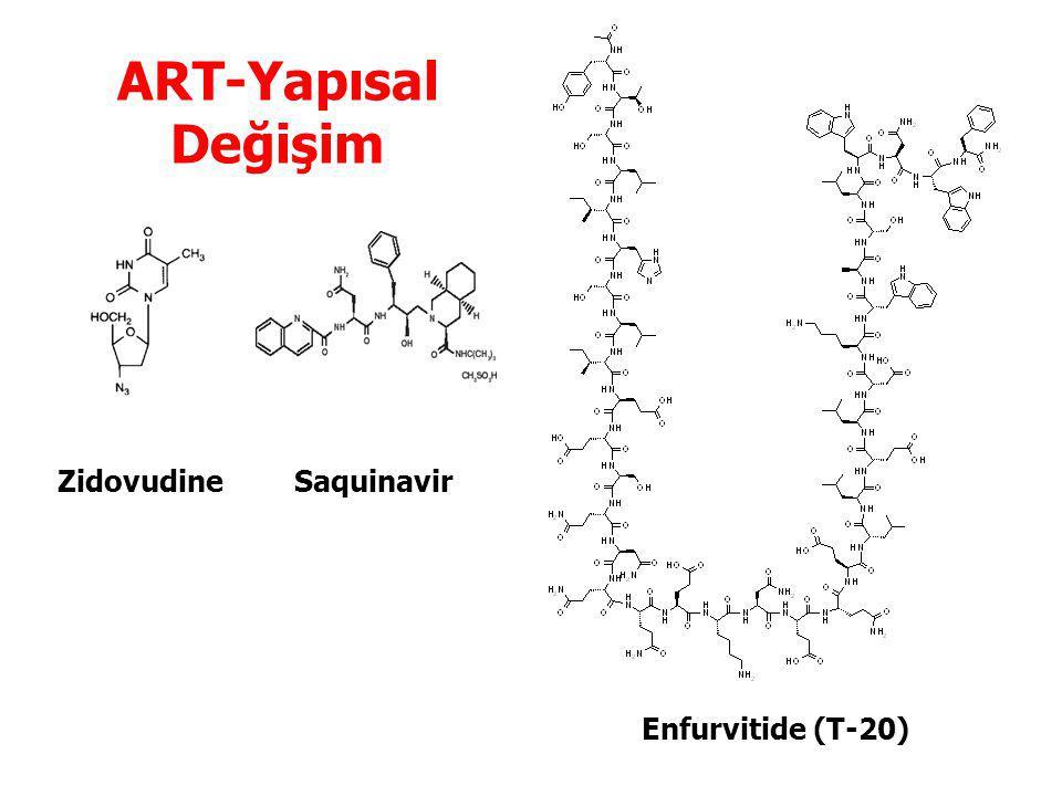 ART-Yapısal Değişim Zidovudine Saquinavir Enfurvitide (T-20)