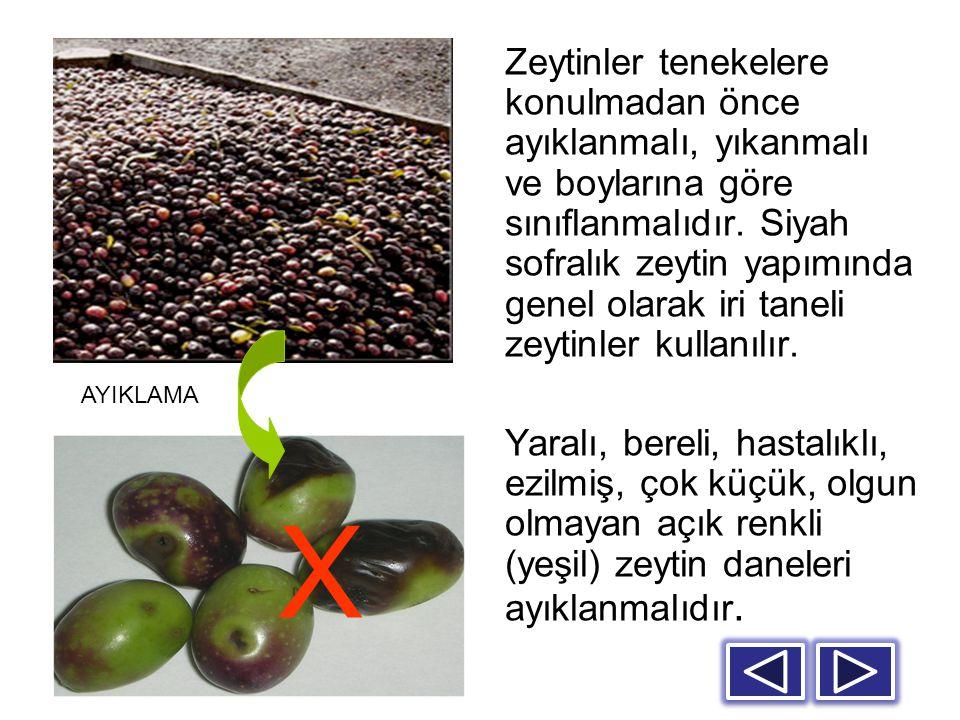 Zeytinler tenekelere konulmadan önce ayıklanmalı, yıkanmalı ve boylarına göre sınıflanmalıdır. Siyah sofralık zeytin yapımında genel olarak iri taneli zeytinler kullanılır.