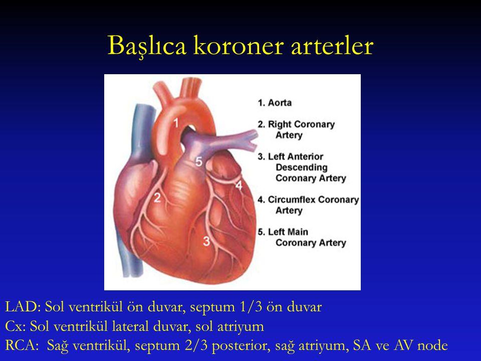 Başlıca koroner arterler