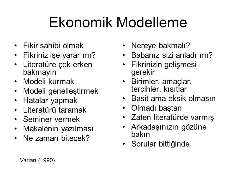 Ekonomik Modelleme Fikir sahibi olmak Fikriniz işe yarar mı