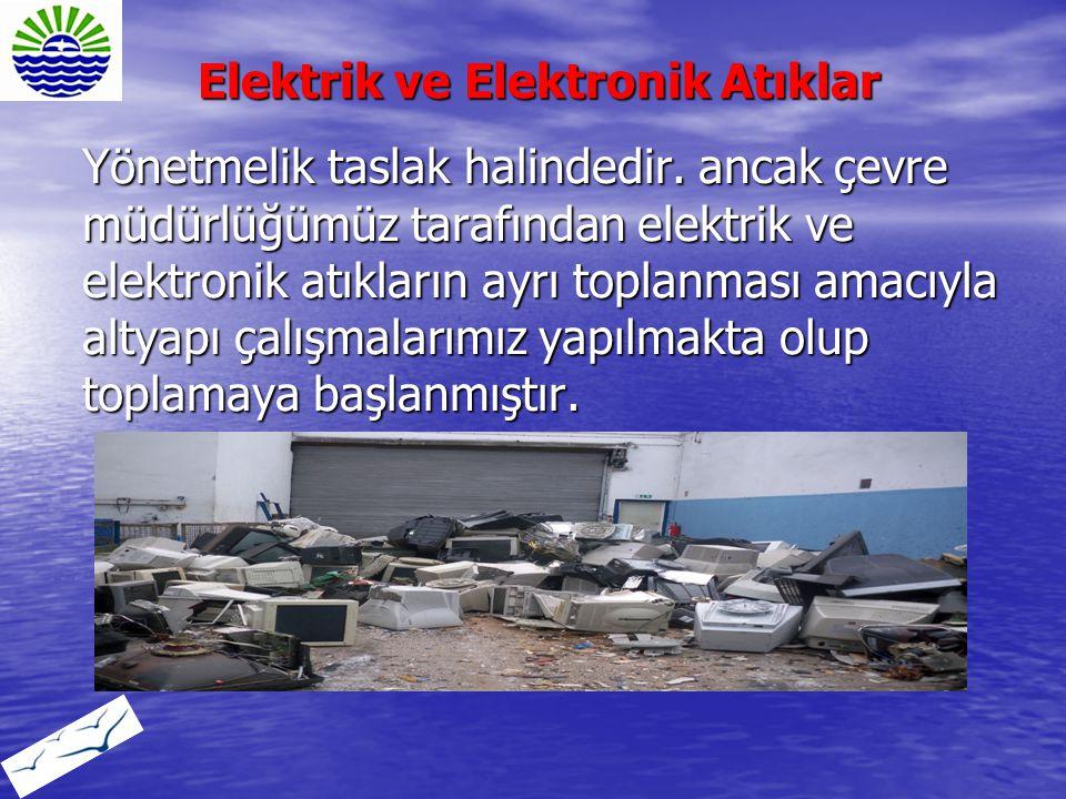 Elektrik ve Elektronik Atıklar
