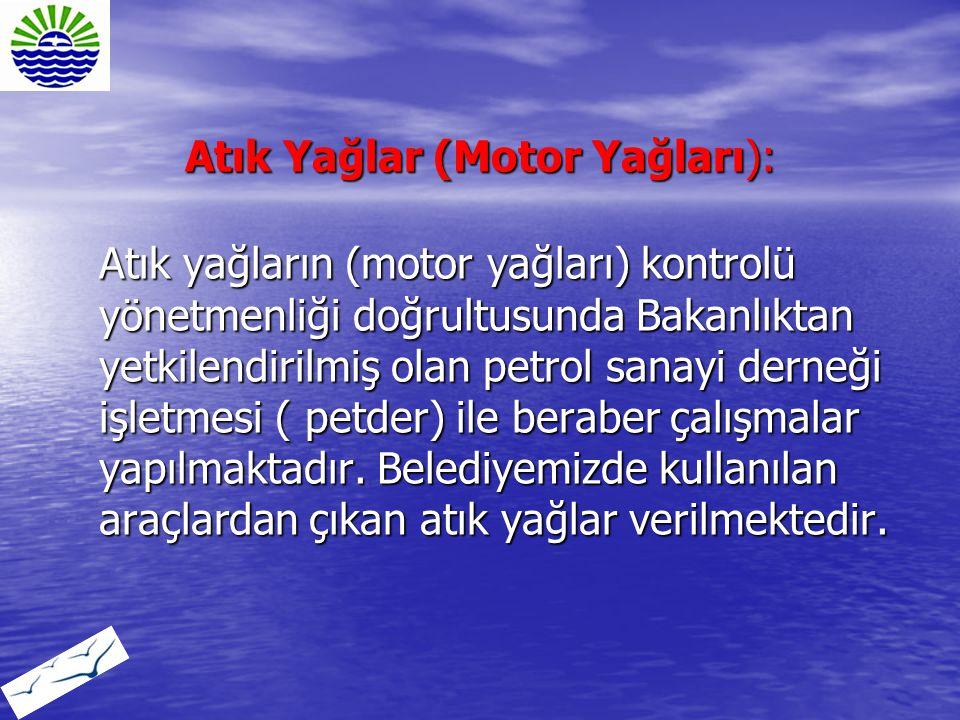 Atık Yağlar (Motor Yağları):
