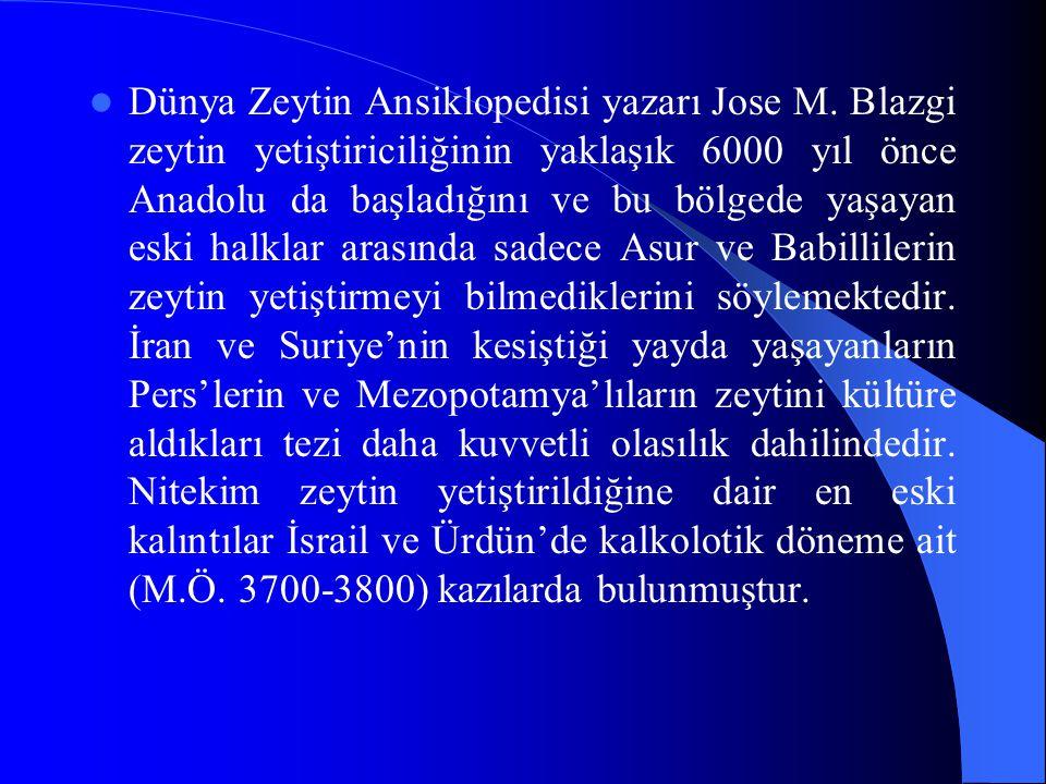 Dünya Zeytin Ansiklopedisi yazarı Jose M