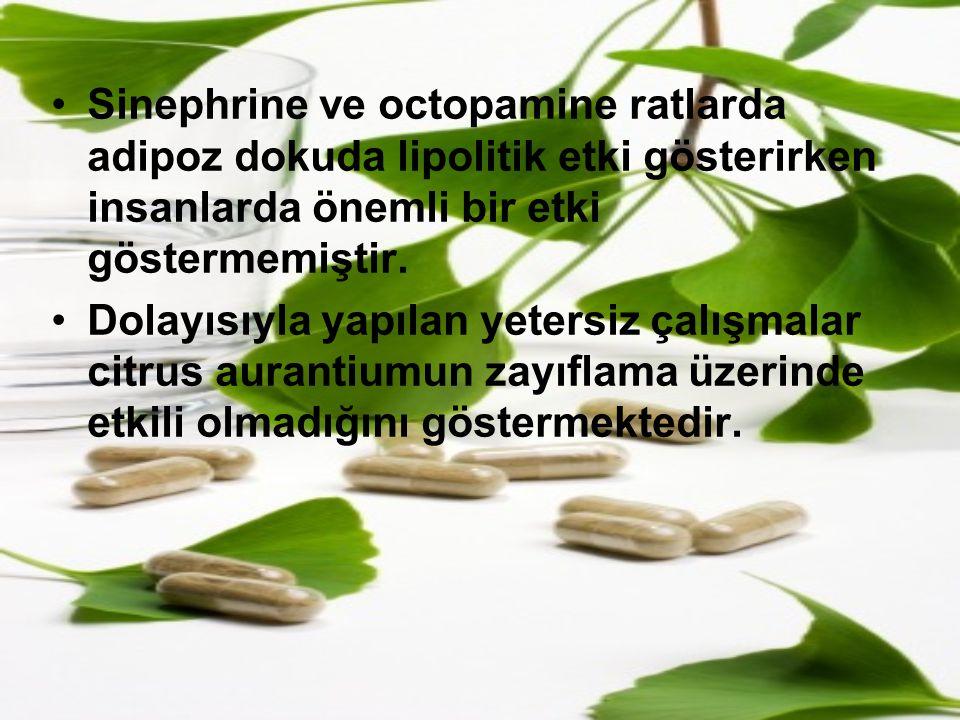 Sinephrine ve octopamine ratlarda adipoz dokuda lipolitik etki gösterirken insanlarda önemli bir etki göstermemiştir.