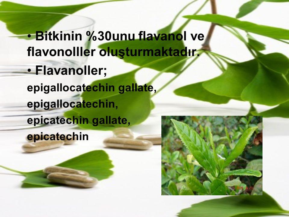 Bitkinin %30unu flavanol ve flavonolller oluşturmaktadır. Flavanoller;