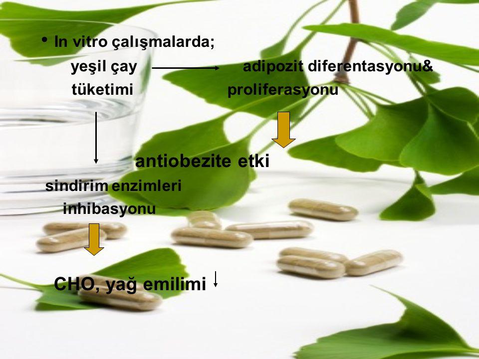 In vitro çalışmalarda;
