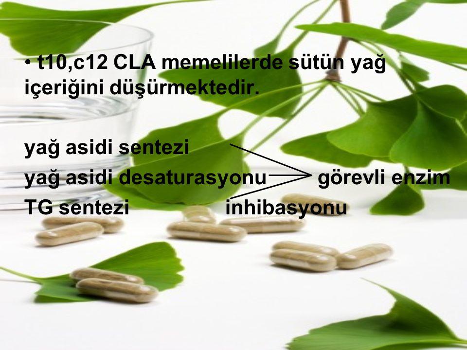 t10,c12 CLA memelilerde sütün yağ içeriğini düşürmektedir.