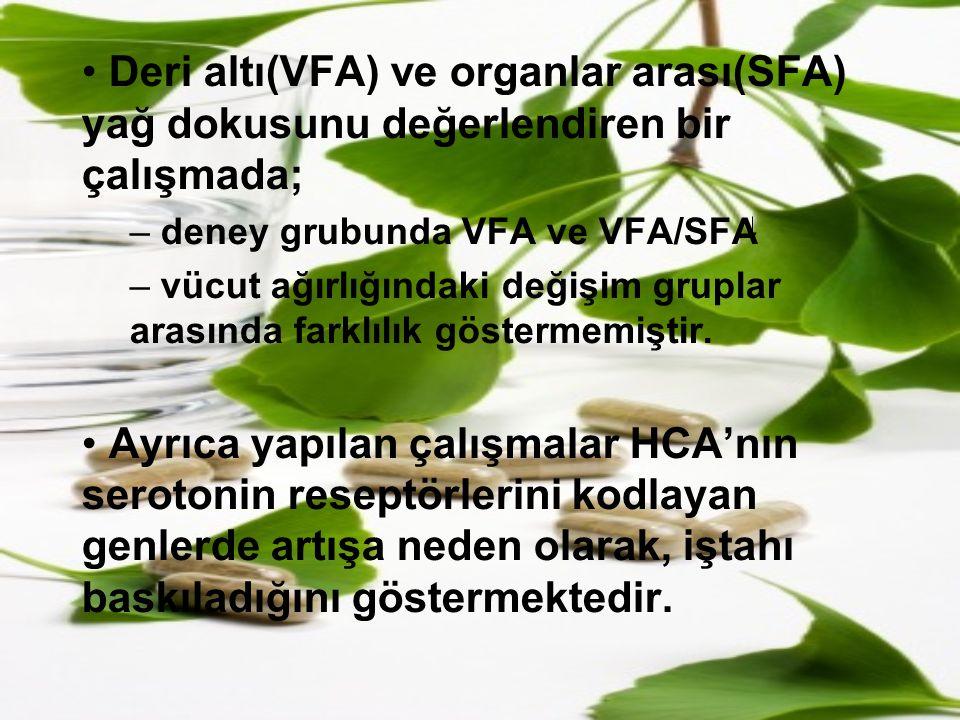 Deri altı(VFA) ve organlar arası(SFA) yağ dokusunu değerlendiren bir çalışmada;