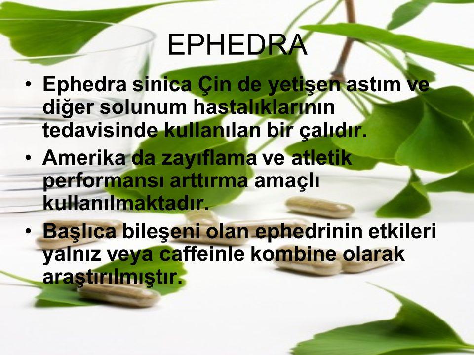 EPHEDRA Ephedra sinica Çin de yetişen astım ve diğer solunum hastalıklarının tedavisinde kullanılan bir çalıdır.