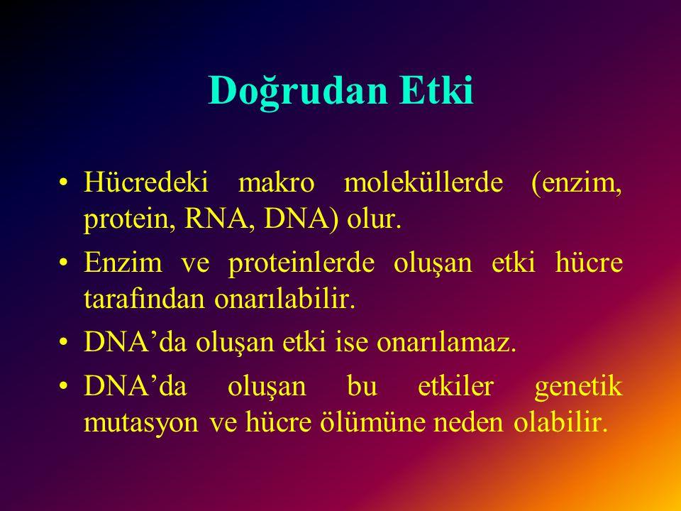 Doğrudan Etki Hücredeki makro moleküllerde (enzim, protein, RNA, DNA) olur. Enzim ve proteinlerde oluşan etki hücre tarafından onarılabilir.