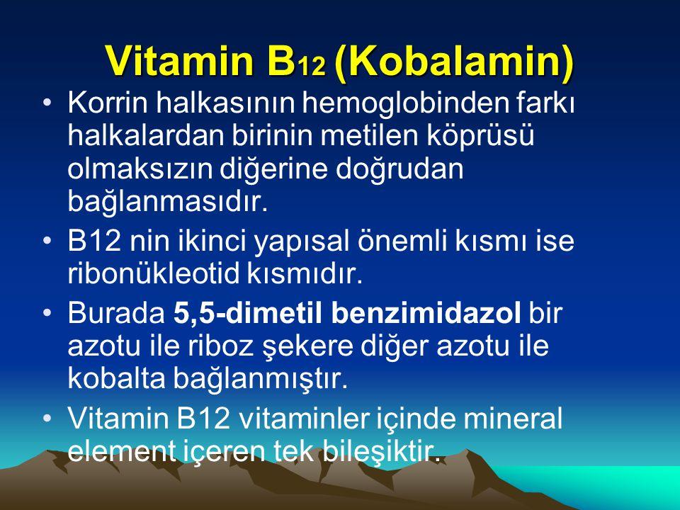 Vitamin B12 (Kobalamin) Korrin halkasının hemoglobinden farkı halkalardan birinin metilen köprüsü olmaksızın diğerine doğrudan bağlanmasıdır.