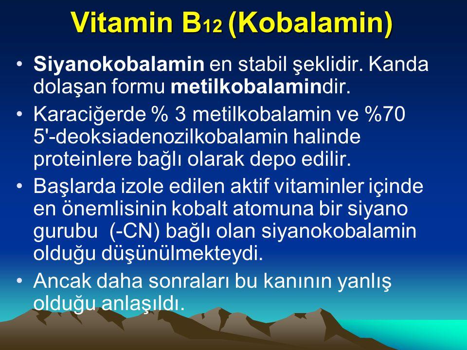 Vitamin B12 (Kobalamin) Siyanokobalamin en stabil şeklidir. Kanda dolaşan formu metilkobalamindir.