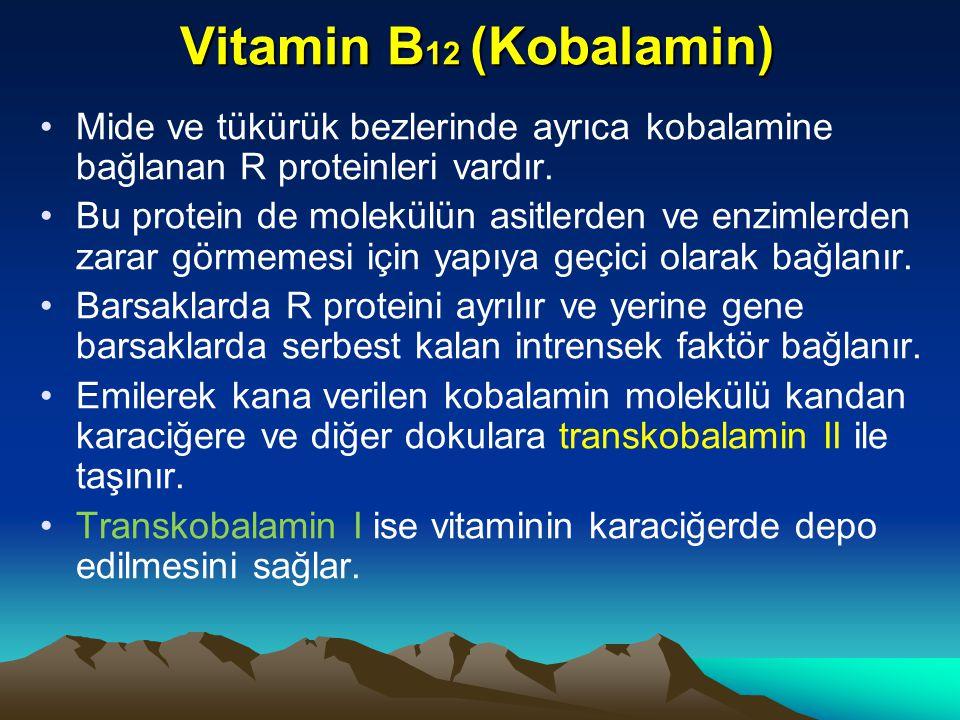 Vitamin B12 (Kobalamin) Mide ve tükürük bezlerinde ayrıca kobalamine bağlanan R proteinleri vardır.