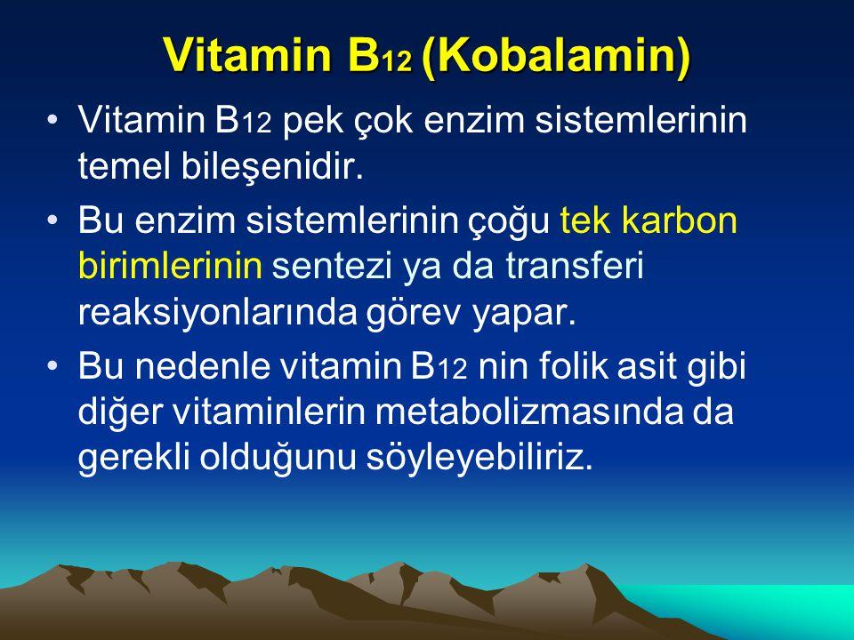 Vitamin B12 (Kobalamin) Vitamin B12 pek çok enzim sistemlerinin temel bileşenidir.