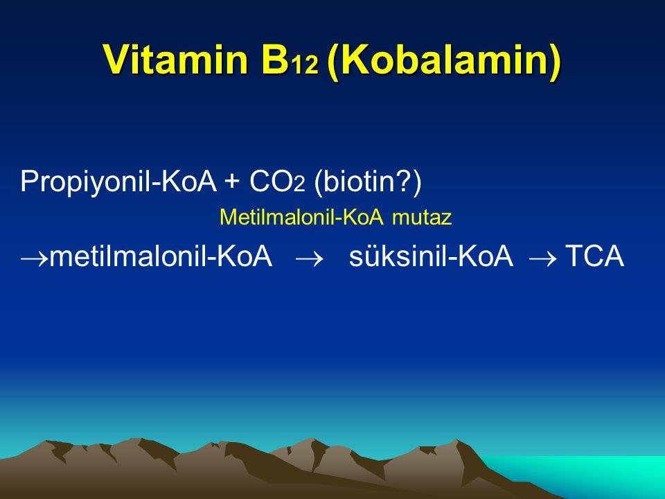 Vitamin B12 (Kobalamin) Propiyonil-KoA + CO2 (biotin )