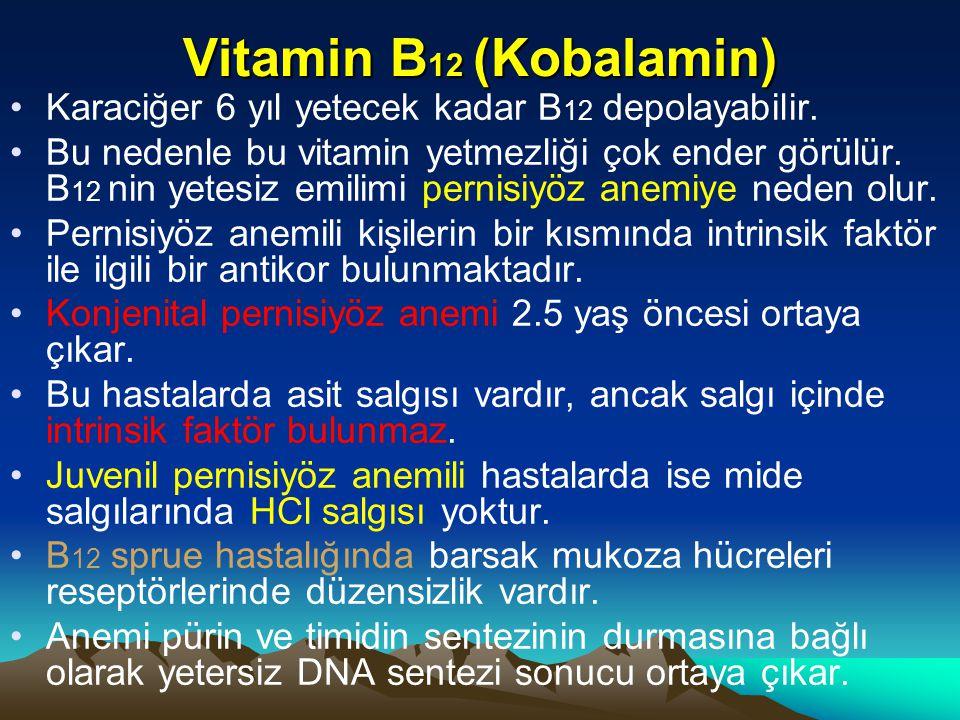 Vitamin B12 (Kobalamin) Karaciğer 6 yıl yetecek kadar B12 depolayabilir.
