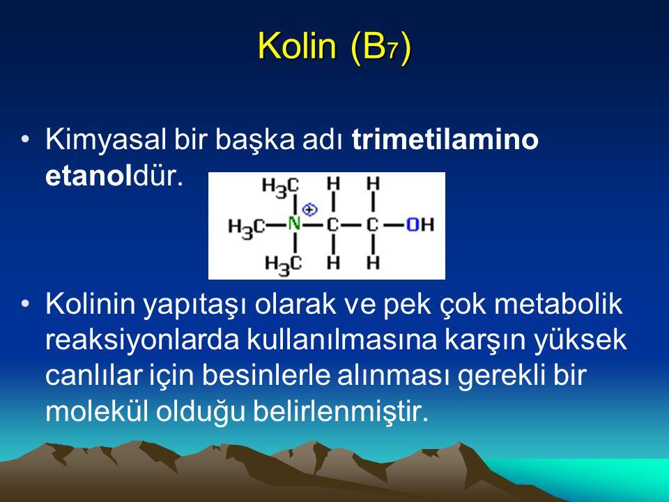 Kolin (B7) Kimyasal bir başka adı trimetilamino etanoldür.