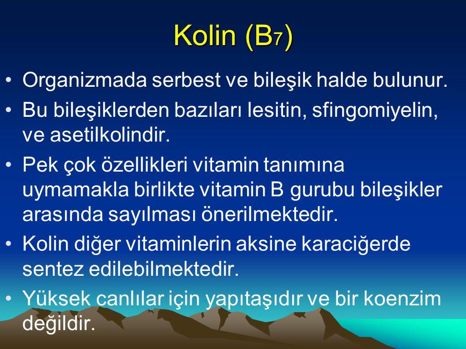 Kolin (B7) Organizmada serbest ve bileşik halde bulunur.