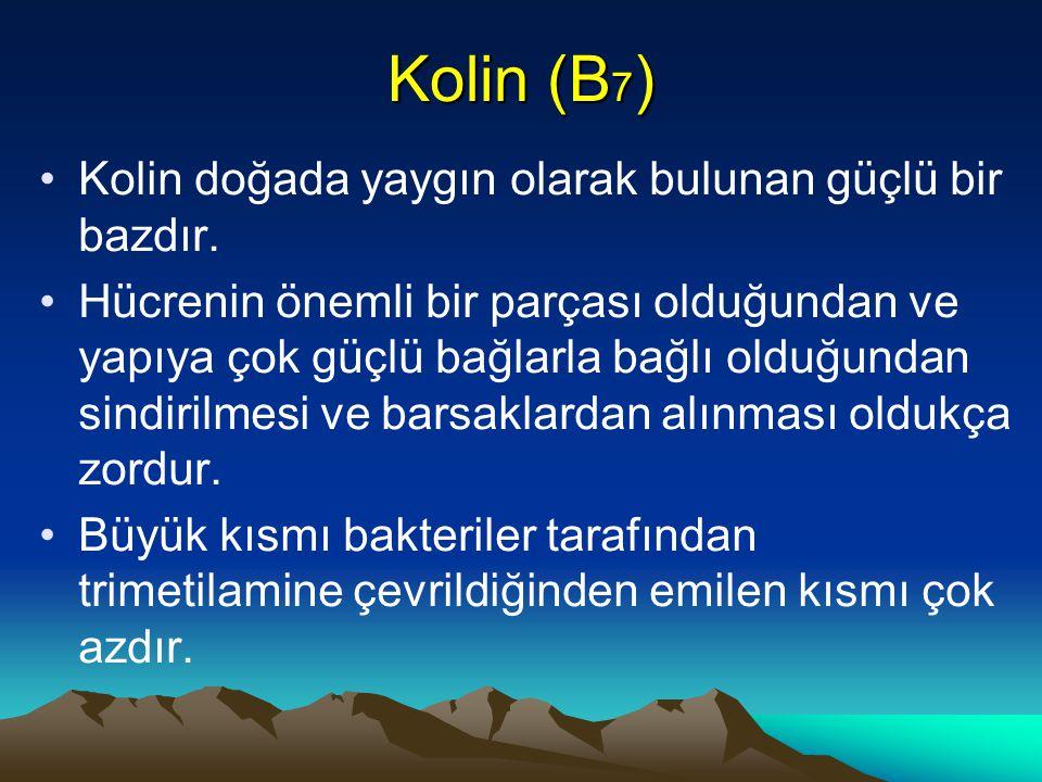 Kolin (B7) Kolin doğada yaygın olarak bulunan güçlü bir bazdır.