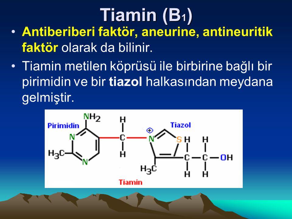 Tiamin (B1) Antiberiberi faktör, aneurine, antineuritik faktör olarak da bilinir.