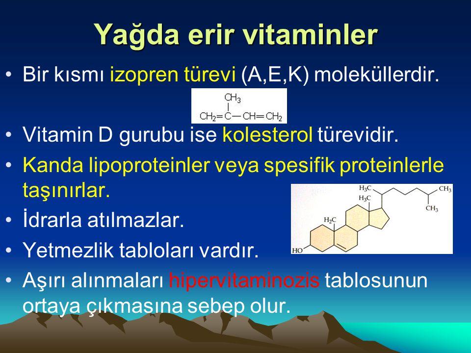 Yağda erir vitaminler Bir kısmı izopren türevi (A,E,K) moleküllerdir.
