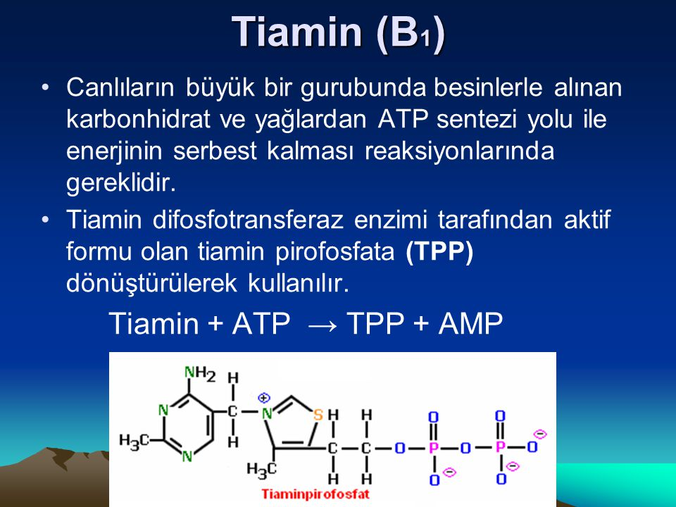 Tiamin (B1) Tiamin + ATP → TPP + AMP