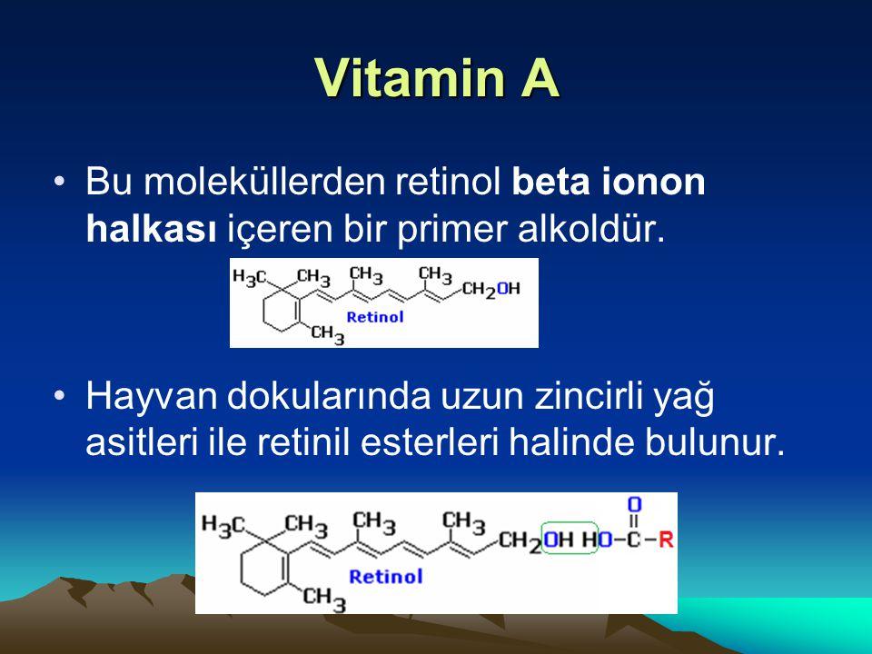 Vitamin A Bu moleküllerden retinol beta ionon halkası içeren bir primer alkoldür.