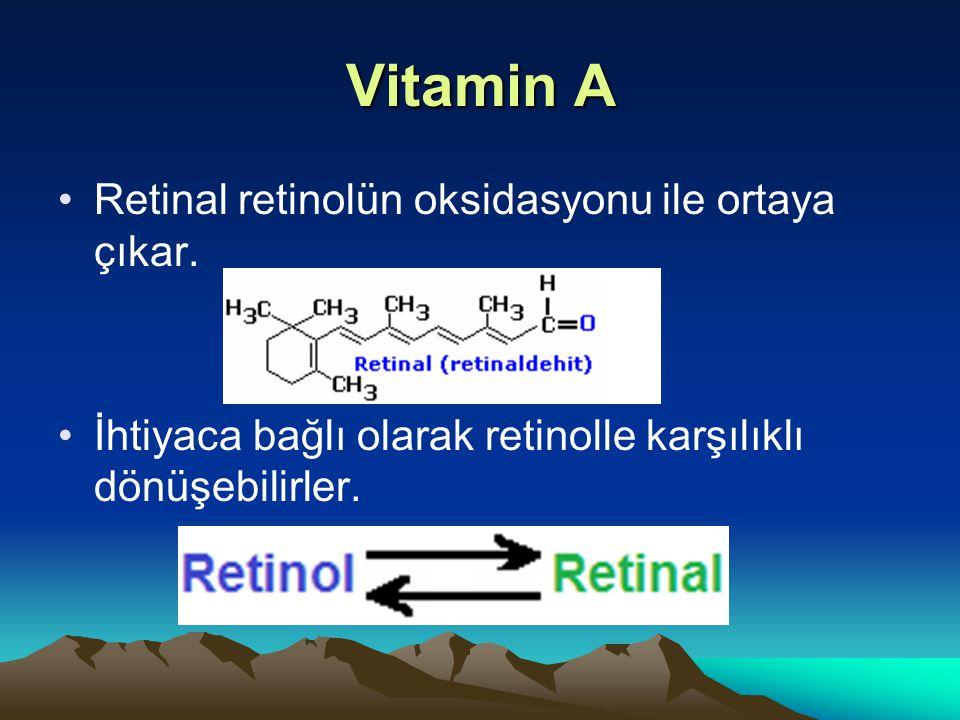 Vitamin A Retinal retinolün oksidasyonu ile ortaya çıkar.