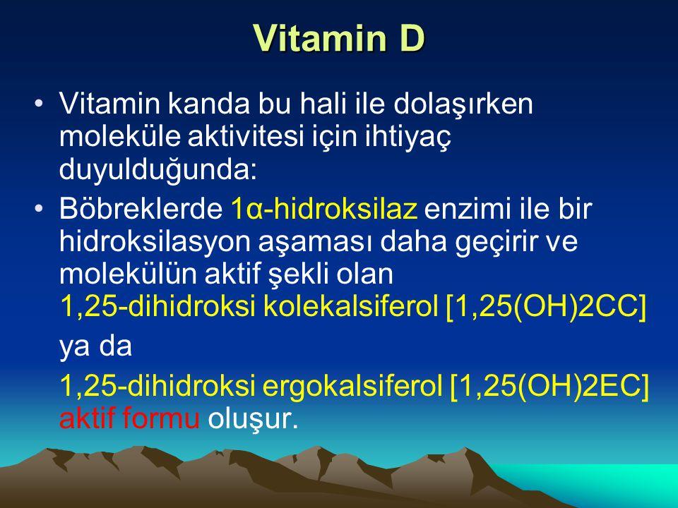 Vitamin D Vitamin kanda bu hali ile dolaşırken moleküle aktivitesi için ihtiyaç duyulduğunda: