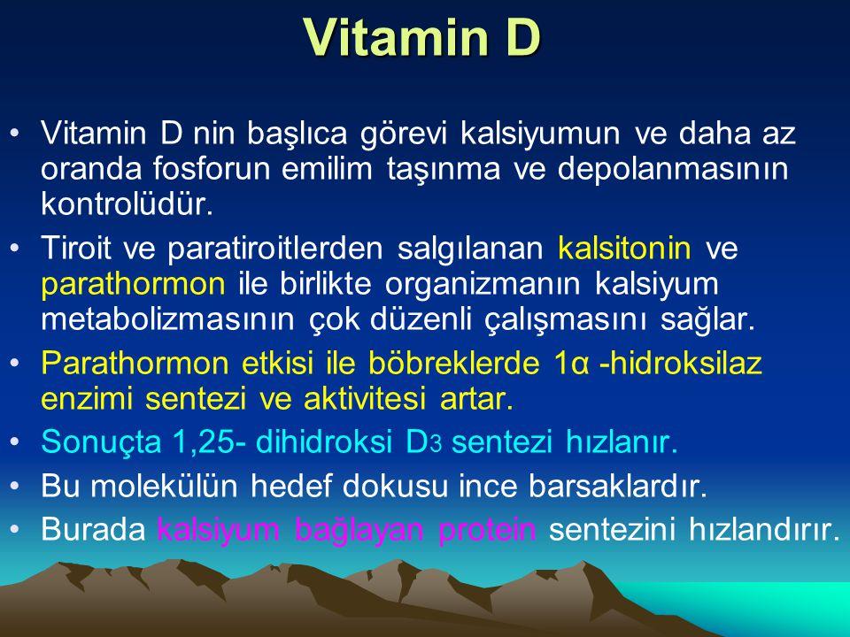 Vitamin D Vitamin D nin başlıca görevi kalsiyumun ve daha az oranda fosforun emilim taşınma ve depolanmasının kontrolüdür.
