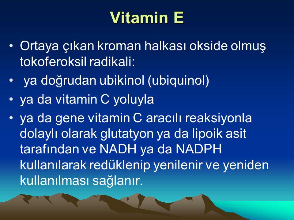 Vitamin E Ortaya çıkan kroman halkası okside olmuş tokoferoksil radikali: ya doğrudan ubikinol (ubiquinol)