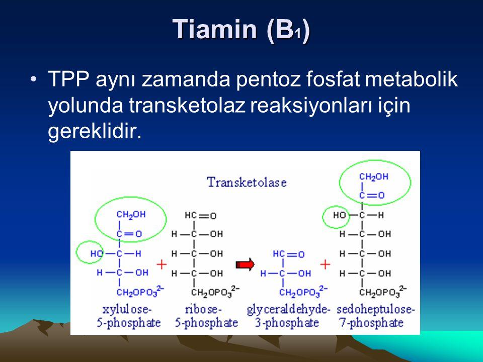 Tiamin (B1) TPP aynı zamanda pentoz fosfat metabolik yolunda transketolaz reaksiyonları için gereklidir.