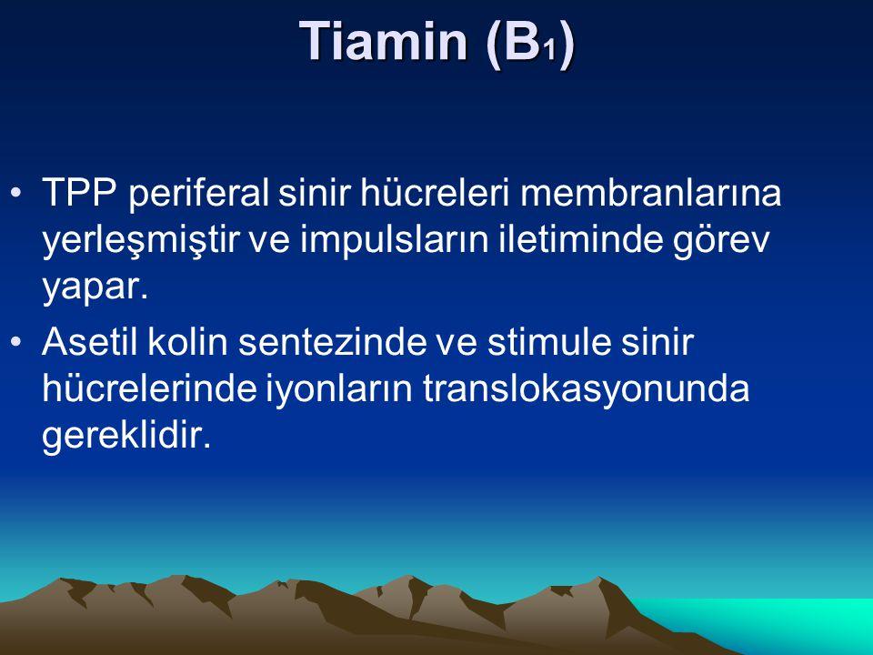 Tiamin (B1) TPP periferal sinir hücreleri membranlarına yerleşmiştir ve impulsların iletiminde görev yapar.